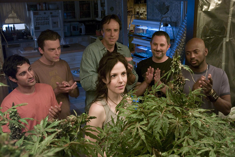 Women and the Weed Business