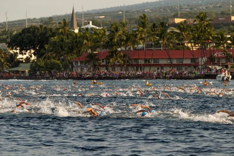 Fluid, Endurance sports, Tourism, Water sport, Arecales, Open water swimming, Wave, Quadrathlon, Palm tree, Boats and boating--Equipment and supplies,