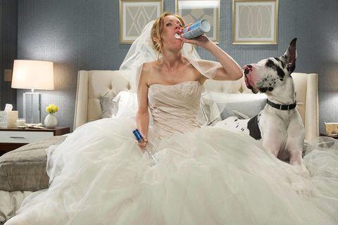 Clothing, Dress, Textile, Dog breed, White, Bridal clothing, Dog, Gown, Wedding dress, Carnivore,