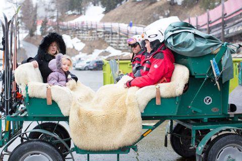 Tire, Wheel, Mode of transport, Human, Winter, Helmet, Carriage, Working animal, Wagon, Freezing,