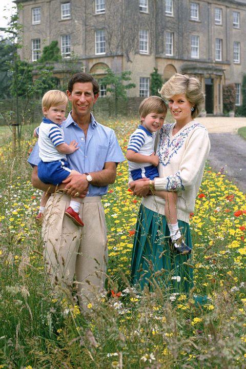 Plant, Window, People in nature, Wildflower, Spring, Meadow, Estate, Prairie, Baby, Family,
