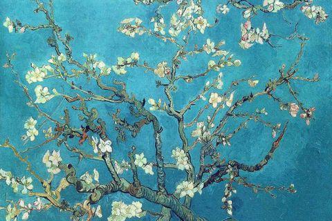 Branch, Blue, Twig, Organism, Botany, Pattern, Aqua, Turquoise, Azure, Teal,