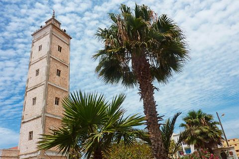 Sky, Cloud, Tree, Woody plant, Arecales, Tower, Church, Cumulus, Palm tree, Place of worship,