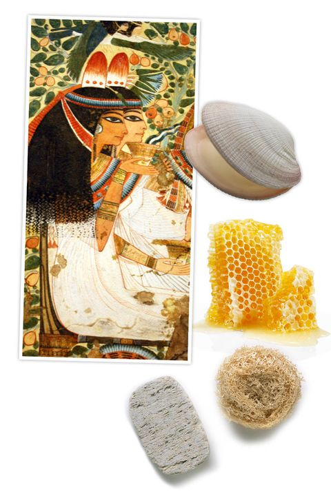 Organism, Peach, Natural material, Cosmetics, Cockle,