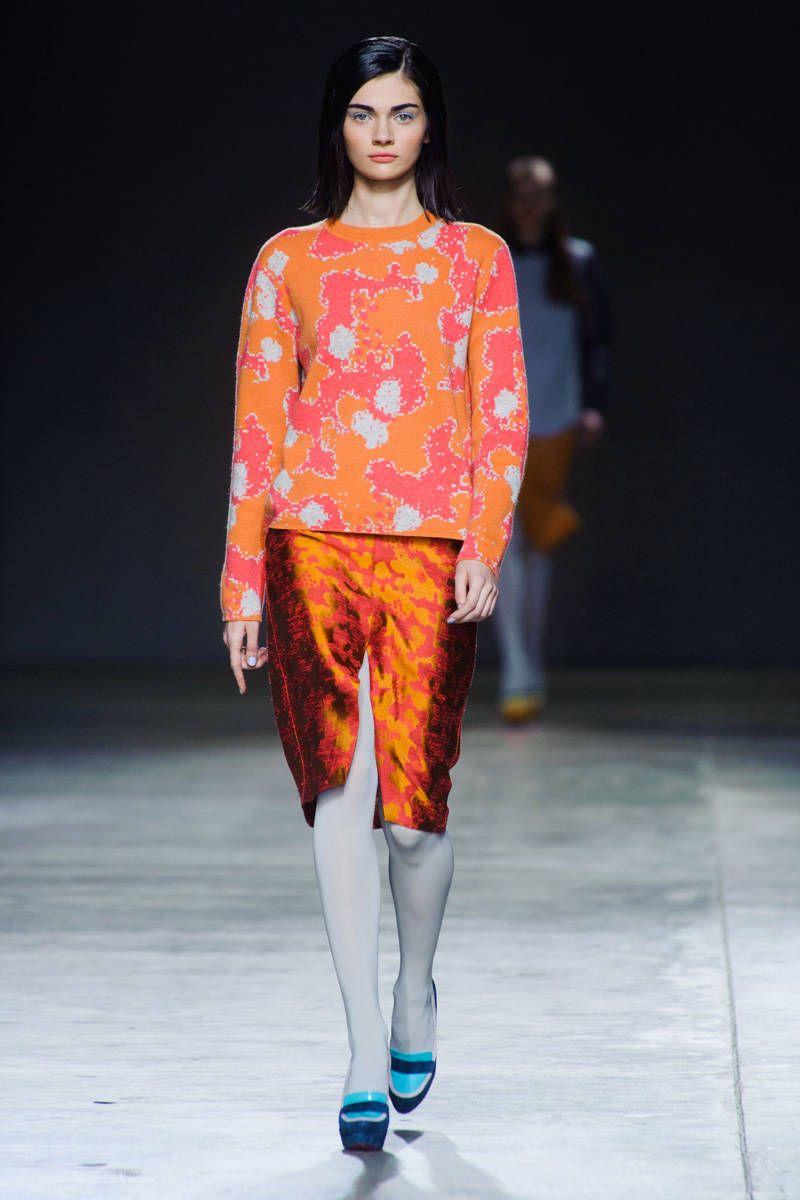 michael van der ham fall 2014 ready-to-wear photos