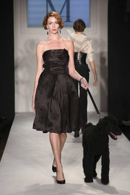 Dog breed, Dress, Shoulder, Outerwear, Dog, Carnivore, Formal wear, Style, One-piece garment, Strapless dress,