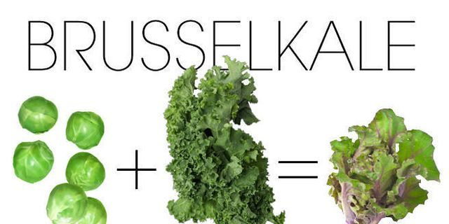 Did Kale Just Get Even Better?
