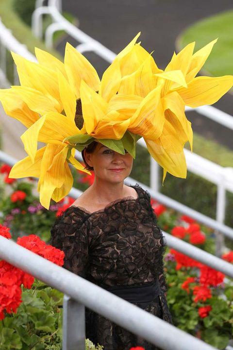 Petal, Flower, Sunglasses, Costume accessory, Spring, Costume, Fence, Coquelicot, Annual plant, Lipstick,