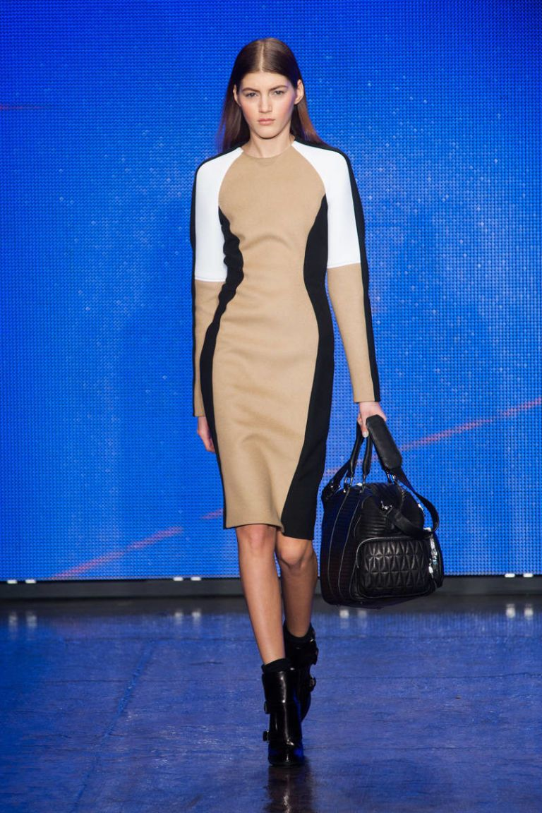 dkny fall 2013 ready-to-wear photos