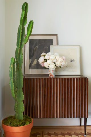 Flowerpot, Petal, Terrestrial plant, Botany, Picture frame, Interior design, Flowering plant, Hardwood, Houseplant, Thorns, spines, and prickles,