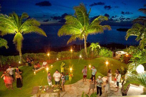 Lighting, Tree, Arecales, Tropics, Resort, Tradition, Ceremony, Palm tree, Attalea speciosa, Holiday,