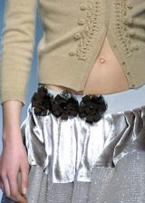 Alberta Ferretti Fall 2005 Ready-to-Wear Detail 0003