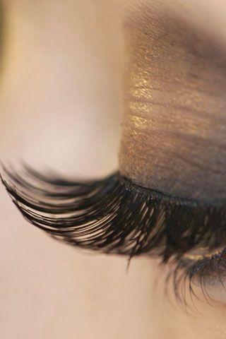 Brown, Hairstyle, Eyebrow, Eyelash, Style, Organ, Beauty, Fashion, Grey, Tints and shades,