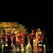 Artist, Stage, Performance art, heater, Concert, Dance, Band plays, Talent show, Dancer, Song,