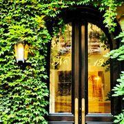 Property, Arch, Shrub, Hedge, Hacienda, Ivy family, Vine,