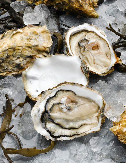 <p>La reina de la cocina afrodisíaca. Afrodita nace de la espuma de las olas y de dentro de una concha de ostra. El hecho de consumirlas crudas y su parecido al órgano sexual femenino parece que fueron el origen del mito de su poder de potenciar la sexualidad. Ricas en minerales, puede formar parte de un plato que nutra una noche de placer donde necesitaremos entera nuestra capacidad y resistencia.&nbsp&#x3B;&nbsp&#x3B;</p>