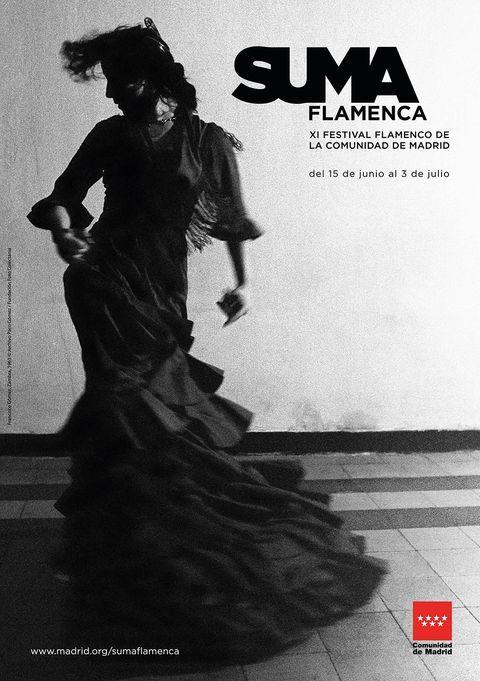 """<p><a href=""""http://www.madrid.org/sumaflamenca/2016/index.html"""" target=""""_blank"""">Suma Flamenca,</a> el Festival Flamenco de la Comunidad de Madrid, llega a su undécima edición convertido en uno de los referentes de los faralaes y el cante jondo. Hasta el 3 de julio, y bajo la dirección de Aida Gómez, se acercarán a diversos teatros de la región artistas de la talla de Vicente Amigo, Estrella Morente, Mayte Martín, Rancapino chico... Además, el 20 y 2l 25 de junio el festival ofrece la posibilidad de asistir a unas clases magistrales de la mano de Jorge Pardo y Farruquito, respectivamente.</p><p>&nbsp;</p>"""