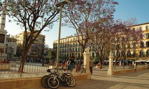 """<p>Pero el gran eje de Málaga es Picasso, que nació aquí en 1881. Muchos son los guiños de la ciudad al genial pintor. Su museo, dedicado a su obra artística, no es ni el único en el mundo ni el más extenso, pero sólo aquí puedes visitar su <a href=""""http://fundacionpicasso.malaga.eu/"""" target=""""_blank"""">Casa Natal</a> (3 euros), en la plaza de la Merced. La ruta picassiana continúa por distintos lugares del centro histórico donde pasó su infancia y culmina en el <a href=""""http://www.museopicassomalaga.org"""" target=""""_blank"""">Museo Picasso,</a> con una selecta colección de distintas etapas de su obra (entrada: 6 euros). </p><p>Termina el paseo artístico en el museo <a href=""""http://www.carmenthyssenmalaga.org"""" target=""""_blank"""">Carmen Thyssen,</a> inaugurado hace menos de dos años y con una bella colección de arte español del siglo XIX, especialmente de pintura andaluza (6 euros).</p><p>Para conocer el corazón popular de la ciudad, paséate por el <a href=""""http://www.mercadodeatarazanas.com/"""" target=""""_blank"""">mercado de las Atarazanas,</a> Disfrutarás de su ambiente de barrio, entre boquerones, <i>cañaíllas</i> (caracoles), aceitunas y otros ricos productos locales, en un edificio cuya reciente restauración le ha devuelto parte de su antiguo encanto –fue antiguo taller y astillero-. </p><p>Y, si aún no has desayunado, prueba los churros de la <a href=""""http://www.casa-aranda.net/"""" target=""""_blank"""">Casa Aranda</a> (Herrería del Rey, 3), que desde hace 75 años es frecuentado por periodistas y locutores para el <i>cafelito</i> de las 12. Y termina con un vino en la <a href=""""http://www.antiguacasadeguardia.net/"""" target=""""_blank"""">Antigua Casa de Guardia</a> (Alameda Principal, 18), bodega de las de antes, que desde 1840 vende caldos de toda la provincia.</p>"""