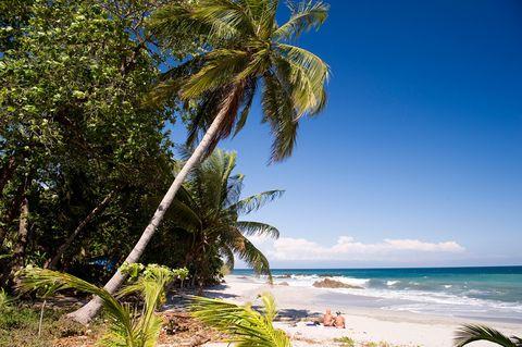 <p>Algo más animada y turística es <strong>Puntarenas</strong>, una localidad portuaria costarricense que tiene mucho que ofrecer: dar una vuelta por su Paseo Turístico al atardecer, hacer cruceros de un día, actividades acuáticas... Los cercanos Parques Nacionales de Carara y el Parque Manuel Antonio te ofrecen la oportunidad de disfrutar de especies distintas a tu familia política en Navidad: iguanas, cocodrilos, perezosos, titís...</p>