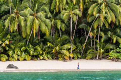 <p>De 'Alcatraz panameño' a paraíso insular: la isla de <strong>Coiba</strong> albergó una prisión hasta el año 2004, lo que le ha permitido mantenerse prácticamente virgen. Hoy en día, reconvertida en Parque Nacional y Patrimonio de la Humanidad por la UNESCO, es todo un paraíso de bosques, playas y arrecifes de coral. En él puedes practicar snorkel, submarinismo o, sencillamente, disfrutar de su flora y fauna, que incluye especies como los cocodrilos, delfines, tiburones... de todo menos renos. Para alojarte, la cercana zona de Santa Catalina es, además de un agradable pueblo de pescadores, uno de los 'hot spots' del surf a nivel mundial. Te prometemos que no verás ni un cotillón.</p>