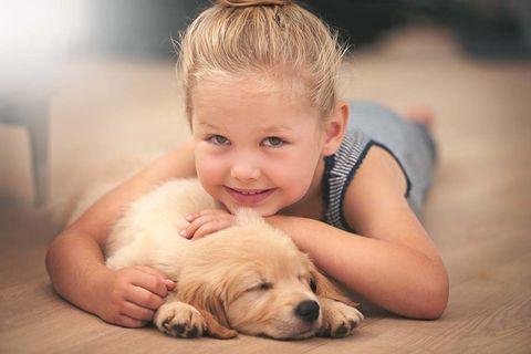 <p>Este tipo de perros requieren una actividad mayor dado su carácter activo y dinámico. Si tienes hijos, será un perro perfecto y si buscas cambiar tus hábitos e incluir el deporte como actividad diaria, inclúyelo como una obligación deliciosa a través de sus paseos y juegos.&nbsp;</p><p>&nbsp;</p><p>&nbsp;</p>