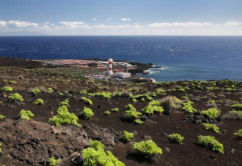 <p>Si eres amante de la vida al aire libre y buscas un destino verde para Semana Santa, La Palma es, sin duda, tu mejor elección. Formaciones rocosas, cráteres de volcanes o el Parque Nacional de la Caldera de Taburiente, Reserva de la Biosfera de la UNESCO, invitan a calzarse las botas de montaña y gozar de la naturaleza en todo su esplendor a través de sus más de 700 kilómetros de senderos. Por otro lado, el rico patrimonio artístico de esta isla de Canarias no deja indiferente a nadie por sus casas con balcones de madera y edificios repletos de leyendas. La Palma cuenta con su propia D.O. de vinos, perfectos para maridar con alguno de los quesos palmeros elaborados con leche entera de cabra o, cómo no, las populares papas con mojo.&nbsp;</p><p>&nbsp;</p>