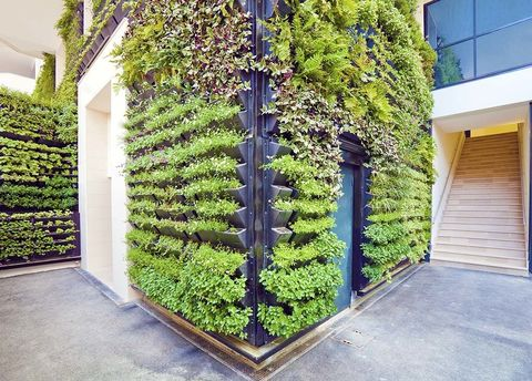 <p>Aquellos cuya pasión natural va más allá de sus hobbies encontrarán en esta profesión la salida perfecta para buscar su felicidad. Y es que la profesión de jardinero, se renueva. ¿El motivo? Las nuevas eco-tecnologías, cubiertas verdes y jardines verticales que requieren de profesionales con conocimientos específicos en estos nuevos campos que pretenden hacer de las ciudades un lugar más respetuoso con el medio ambiente. ¿Loco por lo eco? Este es tu mundo.&nbsp;</p>