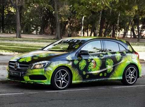 <p>Su Mercedes parece recién llegado del trópico, donde los verdes son protagonistas, al igual que los lémures.</p>