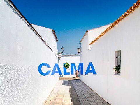 <p>Calma, sosiego, serenidad, remanso, claridad y luz son los adjetivos con los que califican a dos municipios de <strong>Córdoba</strong>, <strong>El Carpio</strong> y <strong>Maruanas</strong>, a orillas del Guadalquivir. Compuestos por casas que aguardan el encanto andaluz (blancas, de teja y con un cielo muy azul protegiéndolas), son la fuente de inspiración perfecta para terminar creando este recorrido artístico compuesto por las seis palabras de forma anamórfica, que se evaden según caminas.</p><p>Para el color no hubo duda: el azul, en consonancia con el cielo y en contraste con las níveas paredes. ¿Los protagonistas? Los propios residentes de estas calles. Su espíritu, queda grabado en forma de pintura.</p>