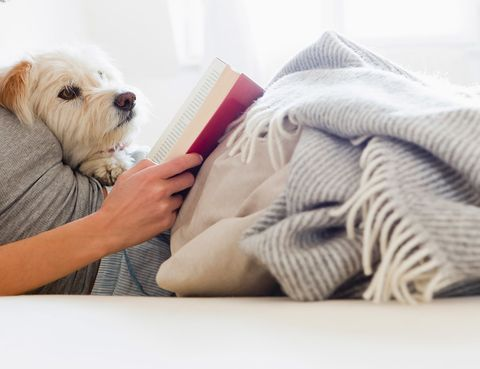<p>Reserva las últimas horas del día para hacer una actividad que te permita desconectar: leer un libro, meditar... &quot;Tu cuerpo necesita tiempo para entrar en fase de sueño, una buena manera es dedicar la hora anterior a acostarse a hacer algo relajante&quot;, asegura la Sleep Foundation.</p>