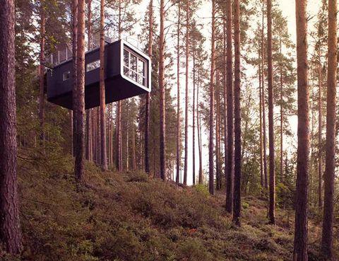 <p>Suspendido entre las copas de los árboles se encuentra este contenedor de 24 m2, al que se accede por un puente colgante. Se trata del Treehotel, en Suecia, y la habitación cuenta con una cama de matrimonio, baño ¡y hasta terraza!</p>