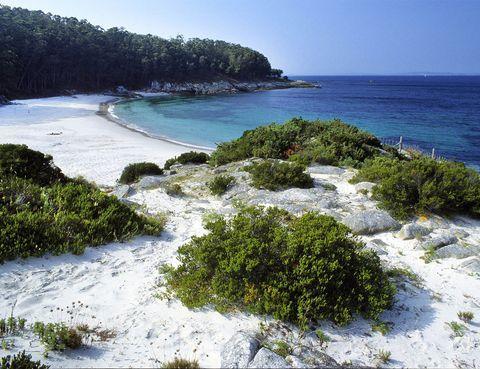<p>Esta maravilla de arena blanca es la playa nudista por excelencia de las Islas Cíes. Es una pequeña playa virgen y con abundante vegetación en la que puedes sentirte libre de mostrar cada centímetro de tu cuerpo. Para llegar a esta obra de arte gallega deberás coger un barco desde Vigo, una vez allí que empiece el destape.</p>