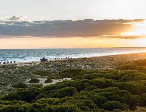 """<p>Se trata de una enorme playa de arena fina, precedida en mucha de su extensión por un bonito pinar mediterráneo que hay que atravesar para llegar al agua. ¿Por qué es perfecta para niños? Por muchas cosas: el oleaje suele ser amable, en la playa cubre muy poquito, la arena parece diseñada para hacer castillos y, además, está abarrotada de conchas de todo tipo, uno de los juguetes playeros favoritos de los más pequeños. Y, aunque se trata del Océano Atlántico, el agua está fresca pero no helada. Si no te parecen argumentos suficientes, pegadito a la playa está el hotel Barceló Punta Umbria Beach Resort, un cuatro estrellas concebido para familias. Los más pequeños tienen todo tipo de actividades: Barcy Aventura (Barcy es la mascota del completo), Princesas por un día, gymkanas en las piscinas, espectáculos nocturnos cada noche… Y, mientras ellos disfrutan, tú puedes desconectar en el spa, darte un masaje en las camas balinesas y disfrutar de todos los servicios del 'todo incluido'. Tienes toda la información en <a href=""""https://www.barcelo.com/barcelohotels/es_es/hoteles/espana/huelva/hotel-barcelo-punta-umbria-beach-resort/descripcion-general.aspx"""" target=""""_blank"""">www.barcelo.com.</a></p>"""