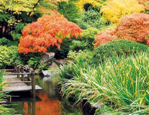 """<p>La vida de Giverny, un pequeño pueblo de la Alta Normandía, a 80 km de París, cambió radicalmente cuando, en 1883, el pintor Claude Monet decidió trasladar aquí su residencia. Años después, el lugar le cautivó tanto que compró unos terrenos y creó los&nbsp&#x3B;jardines&nbsp&#x3B;que deseaba pintar. De este decorado vivo nacieron algunas de sus obras más trascendentes –Los nenúfares, El estanque de las ninfeas, El puente japonés…– y, en pocos años, Giverny se convirtió en punto de encuentro para los grandes artistas de la época, como Cézanne, Renoir y Matisse. En la actualidad, la <a href=""""http://www.foundation-monet.com"""" target=""""_blank"""">Fundación Monet</a> organiza visitas conjuntas de la casa y los&nbsp&#x3B;jardines&nbsp&#x3B;(9,50 euros).</p>"""
