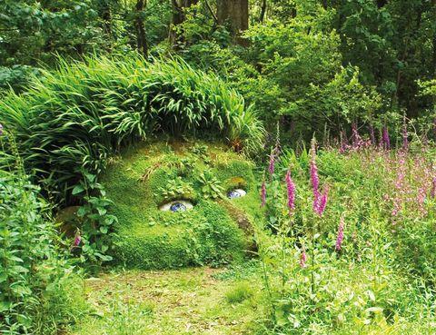 """<p>En Cornualles, al suroeste de Inglaterra, encontrarás uno de losjardinesbotánicos más populares y misteriosos del Reino Unido. Su nombre,<a href=""""http://www.heligan.com"""" target=""""_blank""""> The Lost Gardens of Heligan</a> (Losjardinesperdidos de Heligan), te da una idea del clima que se respira en sus más de 800 ha, en las que cabe todo un catálogo de la naturaleza: desde una jungla con especies tropicales hasta unjardínitaliano o los helechos del área salvaje, sin olvidar a <i>La doncella de fango</i> y <i>La cabeza de gigante,</i> dos figuras hechas a base de rocas y plantas. Abre a diario (10 euros).</p>"""