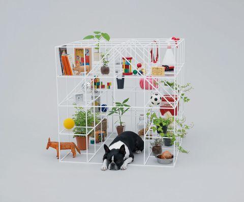 """<p>Los nuevos edificios vanguardistas ya no son majestuosas estructuras de metal destinadas a fundaciones. Ahora, impulsados por la iniciativa <i>Architecture for Dogs</i> de Kenya Hara (director creativo de Muji), arquitectos afamados, como Kazuyo Sejima (artífice de la boutique Dior de Tokyo) o Shigeru Ban (responsable del museo francés Pompidou-Metz), despliegan su desbordante imaginario para realizar casetas y zonas de juego para los perros (<a href=""""http://www.architecturefordogs.com/"""" target=""""_blank"""">www.architecturefordogs.com</a>).</p>"""