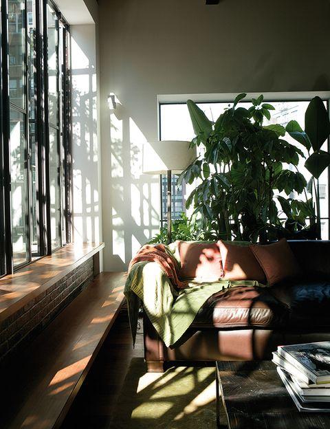 Sofás de cuero envejecido adquiridos en diferentes países dotan a la sala de estar de un espíritu retro muy acogedor.