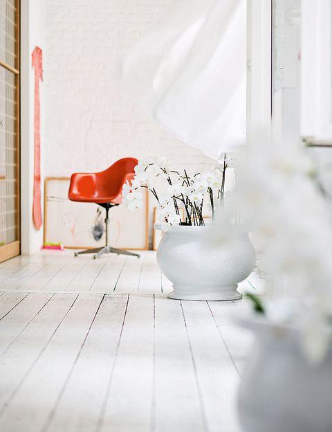 <p>Los grandes ventanales, levemente vestidos con ligeros visillos, ocupan toda una pared, lo que refuerza la luminosidad de esta vivienda. Sobre el suelo de madera lavada y teñida de blanco, un gran macetero de loza con orquídeas, unas flores presentes en toda la casa.</p>