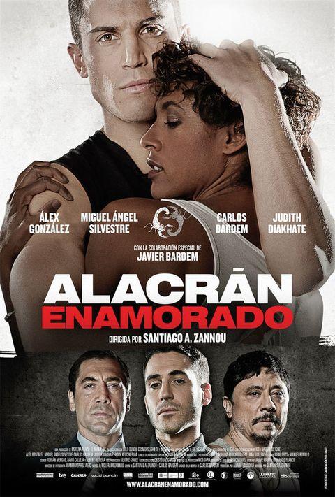 <p>Julián, al que interpreta Álex González, es un boxeador aficionado, miembro de un grupo de cabezas rapadas que se dedica a ir limpiando la ciudad de inmigrantes. Pero su entrenador y sobre todo Alyssa, una joven de la que se enamora, le abrirán los ojos. Podría ser una peli más de boxeo y ovejas descarriadas, pero estando tras la cámara Santiago A. Zannou (si no has visto <i>El truco del manco</i> ya estás tardando), seguramente sea mucho más. Completan el reparto los hermanos Bardem y Miguel Ángel Silvestre.</p>