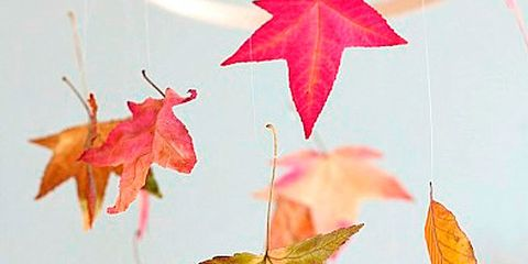 diy otoño
