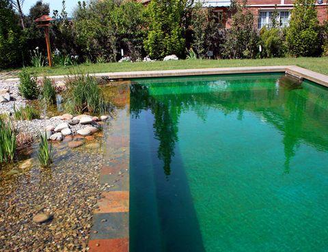 <p>Las piscinas biológicas, además de ser más sanas y ecológicas, permiten dar un toque diferente de diseño al jardín.</p><p><strong>Piscina naturalizada con el sistema TeichMeisterm, uno de los más consolidados en el sector de la depuración natural. La casa está en Sant Antoni-Montseny. </strong></p>