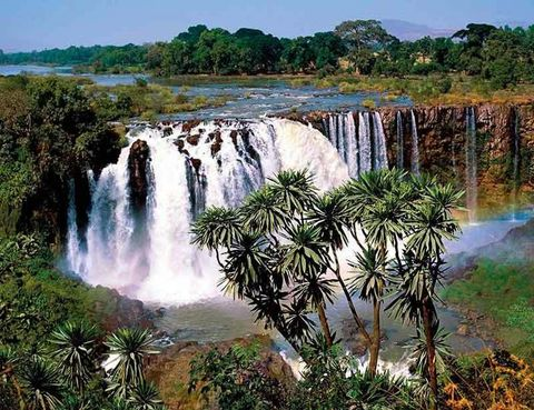 """<p>A diferencia de otras más conocidas, las cataratas del Nilo Azul, a 30 km del lago Tana y de la ciudad de Bahir Dar, aún conservan su pureza natural y no se han visto rodeadas de hoteles y servicios turísticos. Un sendero llega hasta este salto de agua que, según la época del año, es un fino hilo de agua o un caudaloso torrente, en la estación húmeda de 400 m de ancho y 45 m de alto. Tuareg Viajes (Tel. 93 265 23 91) cuenta con una ruta de 8 días por el norte del país que incluye la visita, desde 745 euros (sin el vuelo). <a href=""""http://www.tuaregviatges.es"""" target=""""_blank"""">www.tuaregviatges.es</a>.</p>"""
