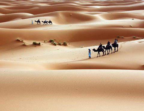 """<p>A veces alcanza los 57ºC, pero en los 9 millones de km cuadrados que ocupa este desierto hay sitio para mucho, en especial para los récords. El Sáhara (o Sahara, sin acento) es el desierto cálido más extenso del mundo y uno de los más conflictivos, con una controvertida historia que llega a nuestros días. Sus límites implican a 11 países del norte africano y se prolongan hasta las pirámides de Egipto y los oasis tunecinos. Justo aquí, Douz –la puerta del Sáhara– acoge un Museo dedicado a este desierto (<a href=""""http://www.patrimoinedetunisie.com"""" target=""""_blank"""">www.patrimoinedetunisie.com</a>) que explica desde el significado de los tatuajes de los nómadas hasta las plantas o la cerámica de la zona.</p>"""