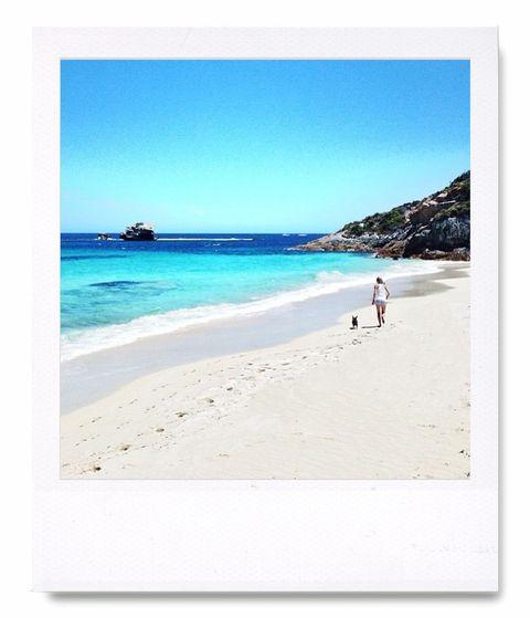 """<p>La cuenta de la oficina de turismo australiana es el perfecto reclamo para viajar al país de los canguros: en ella vemos playas, ciudades, montañas, animales exóticos... Toda una tentación para amantes de los viajes. <a href=""""https://twitter.com/Australia"""" target=""""_blank"""">@australia</a></p>"""