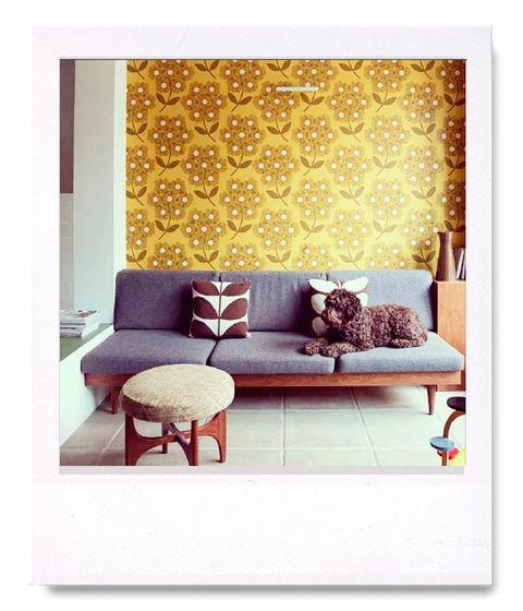 <p>Uno de las señas de identidad que caracterizan el ADN de<strong>Orla Kiely</strong> es su pasión por el trabajo gráfico y por los estampados. En el lugar más íntimo, su hogar, las paredes se visten con los mismos diseños que luego imprimen sus prendas.</p><p>Sin duda, el color y las texturas, mezclado con el estilo retro que caracteriza a la marca, conforman los puntos fuertes de la diseñadora irlandesa.</p>