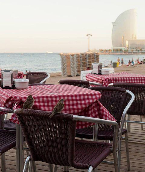"""<p>La playa Barceloneta cuenta con un nuevo rinconcito para ser feliz: <a href=""""http://www.panteagroup.es/chiringuito-gastronomico-la-deliciosa-beach-bar/"""" target=""""_blank"""">La Deliciosa</a>. Un espacio <i>beach bar</i>&nbsp;para disfrutar del mar sobre una tarima de madera bajo el son de notas muy tranquilas. ¿Y de comer? Están ganando fama sus nachos con guacamole y su hamburguesa de calamares <i>Tokyo</i>. Si prefieres algo más sano, prueba sus <i>crudités</i> de verduras. Y para acabar, sólo puede haber una manera: ¡con sus deliciosos cócteles!</p><p><strong>Dónde:</strong>&nbsp;Platja Sant Miquel, Passeig Marítim s/n, Barceloneta, Barcelona.&nbsp;</p>"""
