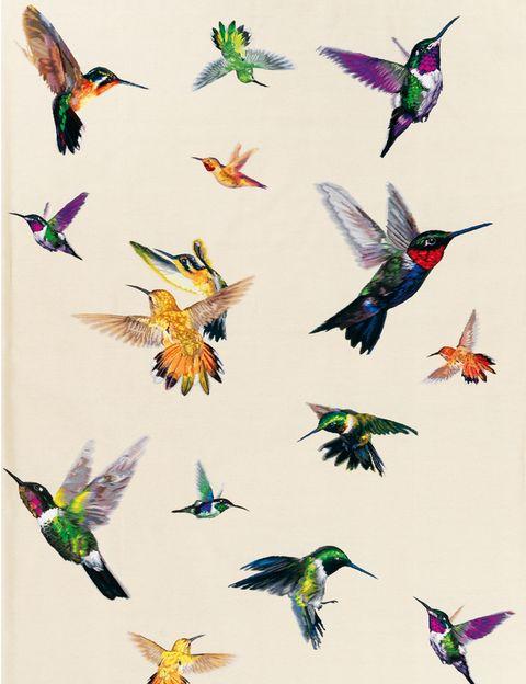 <p><i>Hummingbird,</i> la alfombra del genial Alexander McQueen, ahora en blanco es ¡divina! <strong>The Rug Company</strong>, distribuye: Alfombras BSB. </p>
