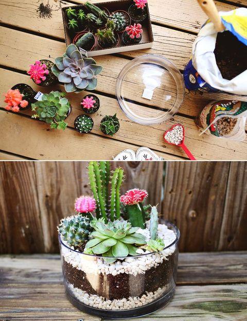 <p>Si sueñas con un jardín, pero tienes que conformarte con un balcón, puedes hacerte un mini bosque de cactus para quitarte el mono. Es muy fácil y le dará un toque alegre a tu terraza. </p>
