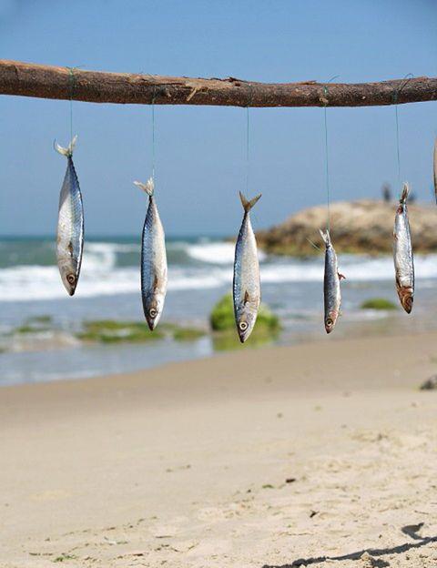 """<p>El momento del aperitivo en la playa es imprescindible en unas vacaciones en el mar, """"pero <strong>solemos escoger alimentos que proporcionan calorías vacías y sin vitaminas</strong>, como las patatas fritas, las golosinas y los refrescos ricos en azúcares"""", dicen desde <a href=""""http://gruponcsalud.com/index.php/es/"""" target=""""_blank"""">Grupo NC Salud</a>. En sustitución. Escoge un nutritivo zumo de frutas naturales, granizados, limonada, los famosos smoothies o la veraniega horchata. <strong>Para picotear.</strong> Escoge las tapas que contengan menos grasas, como las de verduras, marisco y pescados, evitando siempre los fritos. <strong>Recuerda que los omega 3 de pescados, como las sardinas, los boquerones, el atún</strong> o el salmón, ayudan a la reducción de la inflamación y la irritación de la piel dañada por el sol.</p><p></p>"""