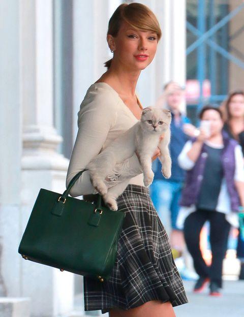 <p><strong>Taylor Swift</strong> no se separa de su pequeño gatito blanco. No nos parece raro porque la verdad es que no puede ser más mono.</p>